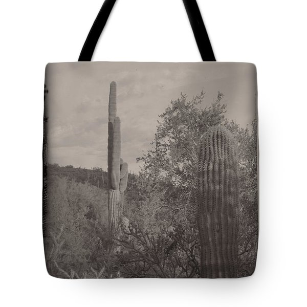 Tote Bag featuring the photograph 1880's Vintage Style Of Arizona by Carolina Liechtenstein