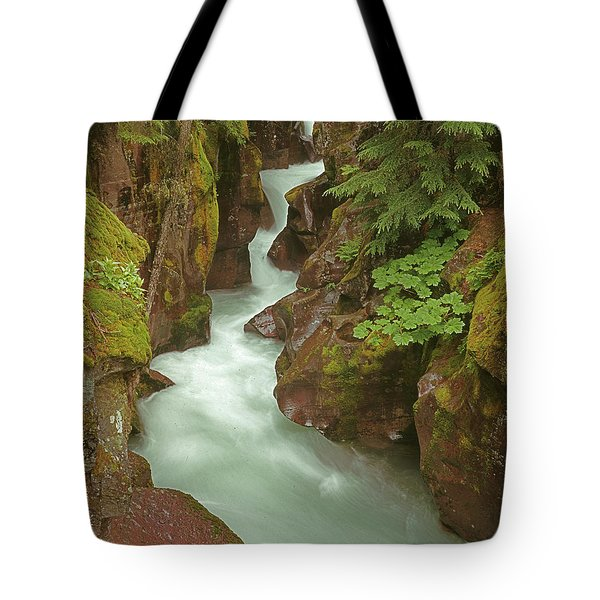 1m8115 Avalanche Gorge Mt Tote Bag