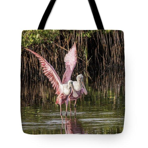 A Pair Of Spoonbills Tote Bag