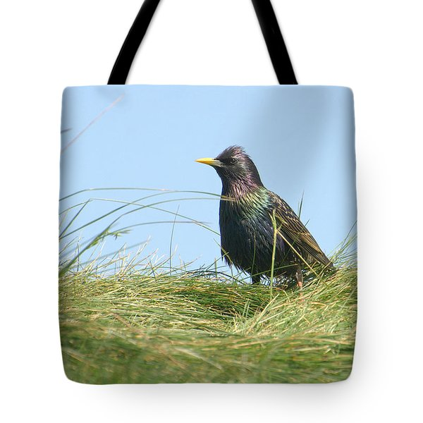 A Place In The Sun Tote Bag by Fraida Gutovich
