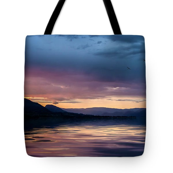 Across The Clouds I See My Shadow Fly Tote Bag