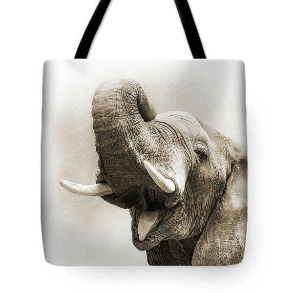African Elephant Closeup Square Tote Bag