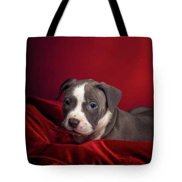 American Pitbull Puppy Tote Bag