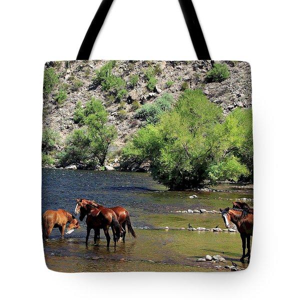 Arizona Wild Horses Tote Bag