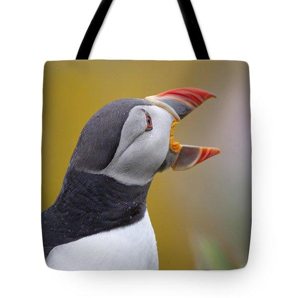 Atlantic Puffin - Scotland Tote Bag