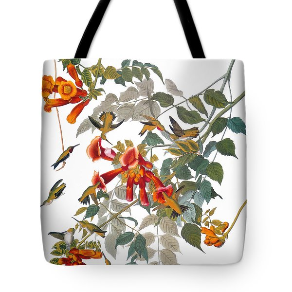 Audubon: Hummingbird Tote Bag by Granger