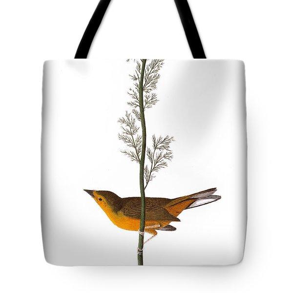 Audubon: Warbler, (1827) Tote Bag by Granger