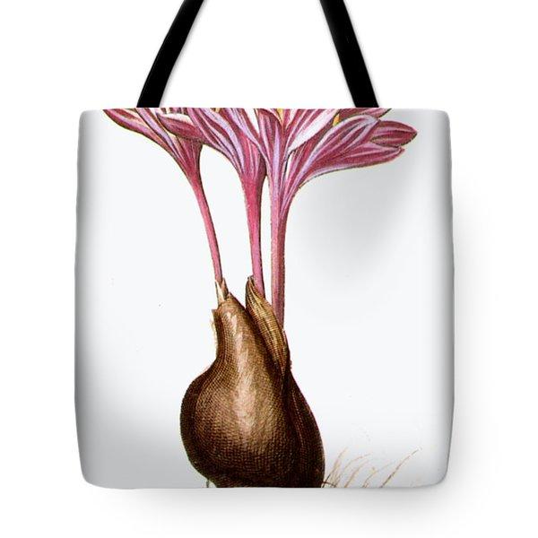 Autumn Crocus Tote Bag by Granger