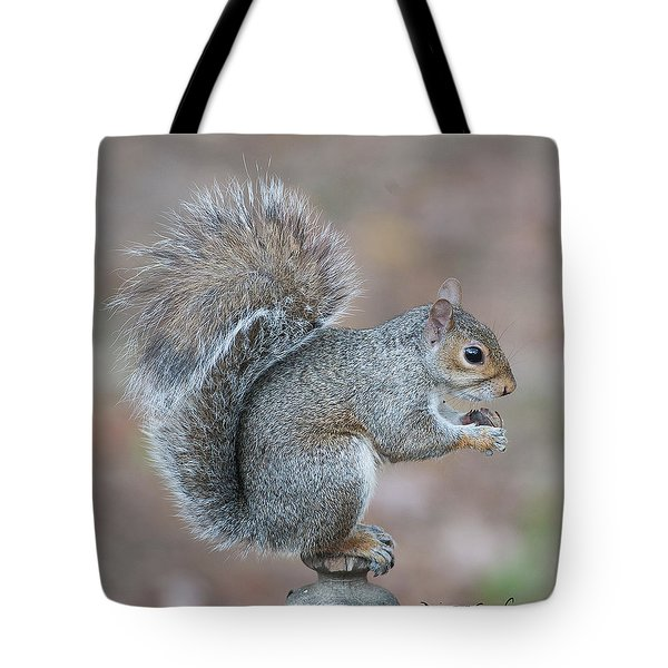 Autumn Squirrel Tote Bag