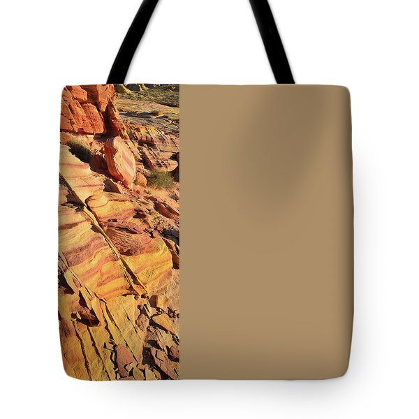 Tote Bag featuring the photograph Bands Of Color In Valley Of Fire by Ray Mathis