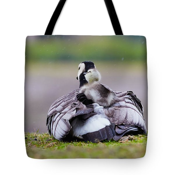 Barnacle Goose With Chick In The Rain Tote Bag