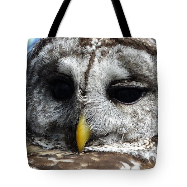 Barred Owl Tote Bag by Rebecca Overton