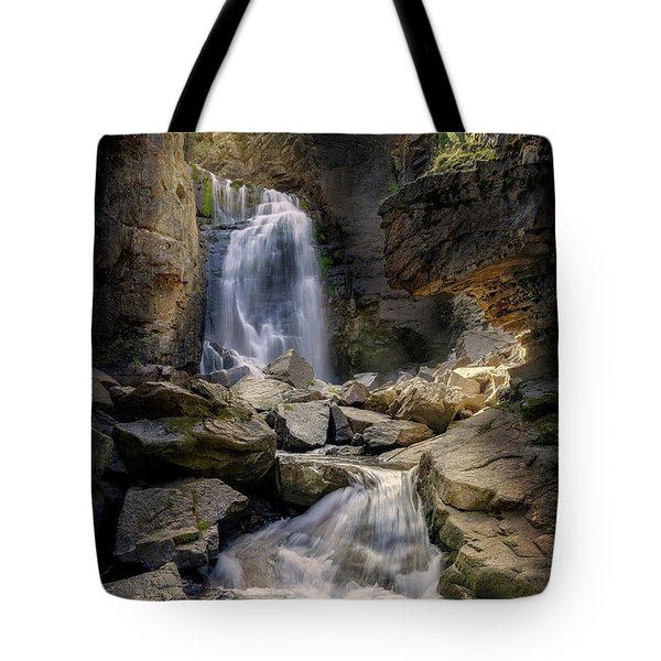 Tote Bag featuring the photograph Beartooth Falls by Craig J Satterlee