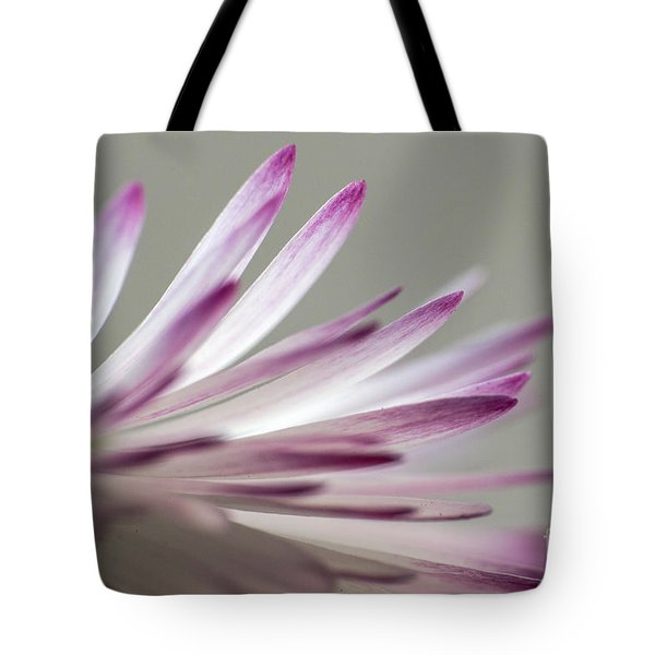 Beautiful Colorful Image About Daisy Flower Tote Bag by Odon Czintos