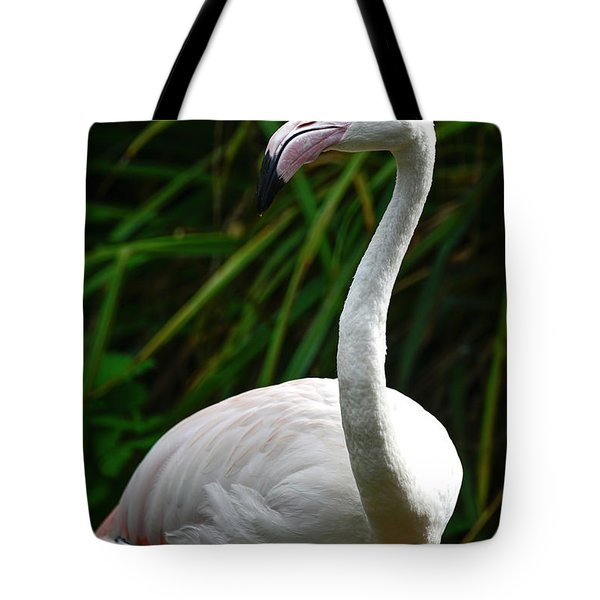 Beautiful Portrait Of Greater Flamingo Phoenicopterus Roseus Bir Tote Bag