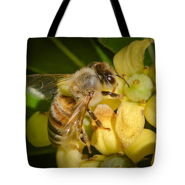 Tote Bag featuring the photograph Bees Gathering From Pittosporum Flowers by Jim Thompson