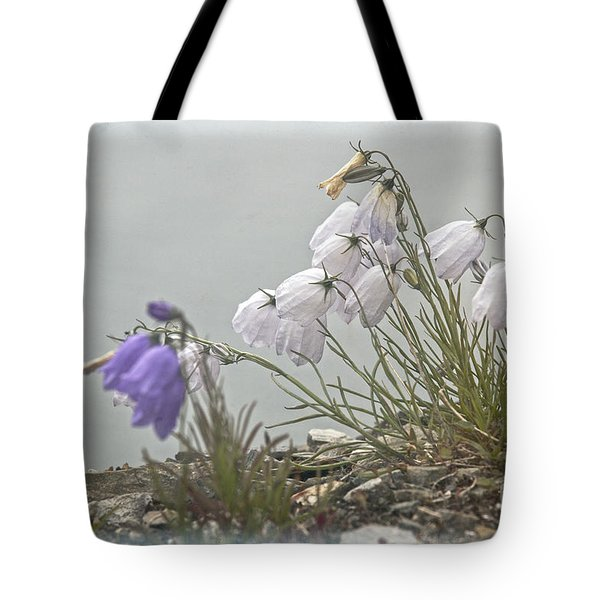 Tote Bag featuring the photograph Bellflower by Heiko Koehrer-Wagner