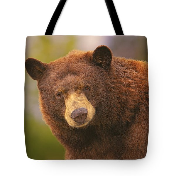 Black Bear Tote Bag by Brian Cross