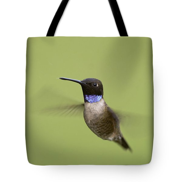 Black-chinned Hummingbird Tote Bag