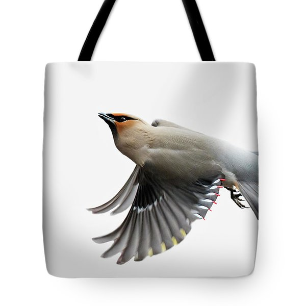 Tote Bag featuring the photograph Bohemian Waxwing  by Mircea Costina Photography