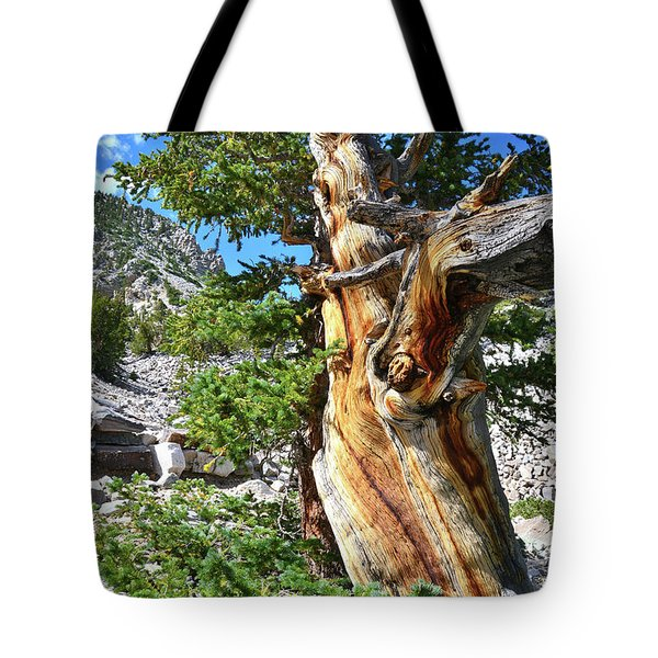 Bristlecone Loop Trail Tote Bag