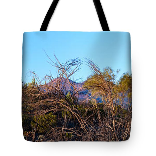 Tote Bag featuring the photograph Bunyeroo Valley by Bill  Robinson