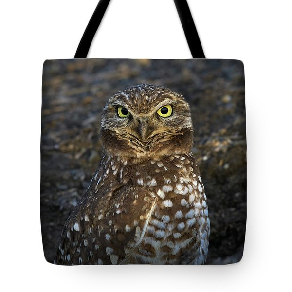 Burrowing Owl Tote Bag by Doug Herr
