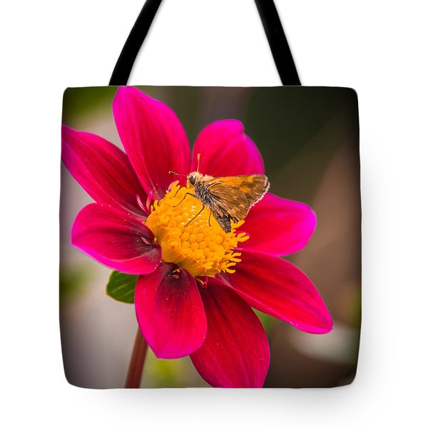 Butterfly Tote Bag by Jerry Cahill