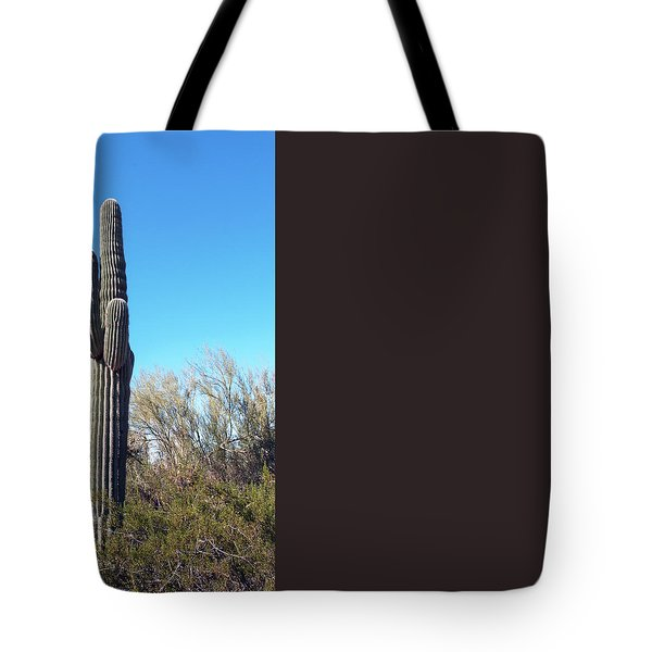 Cactus  Tote Bag by Catherine Lau