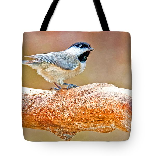 Tote Bag featuring the photograph Carolina Chickadee On Tree Limb by A Gurmankin