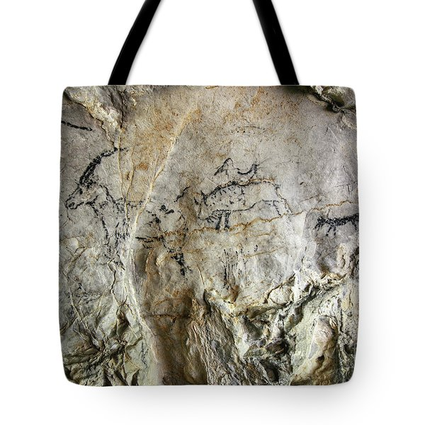 Cave Painting In Prehistoric Style Tote Bag by Michal Boubin