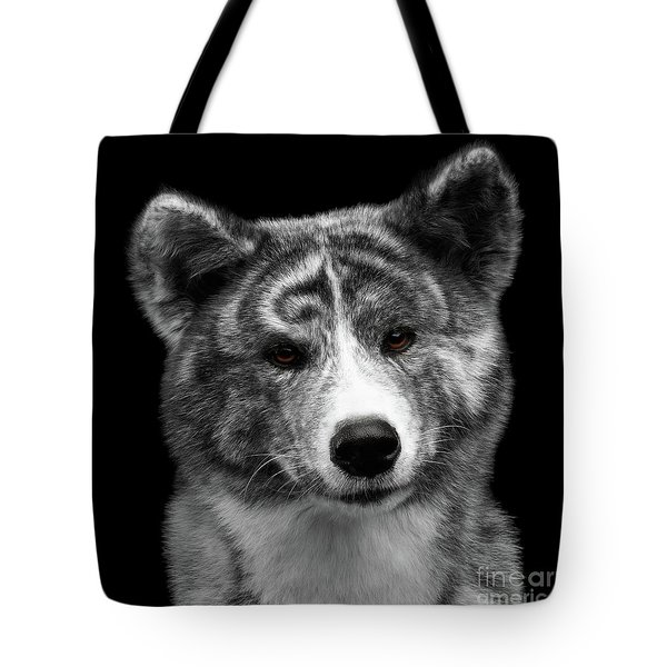 Closeup Portrait Of Akita Inu Dog On Isolated Black Background Tote Bag by Sergey Taran
