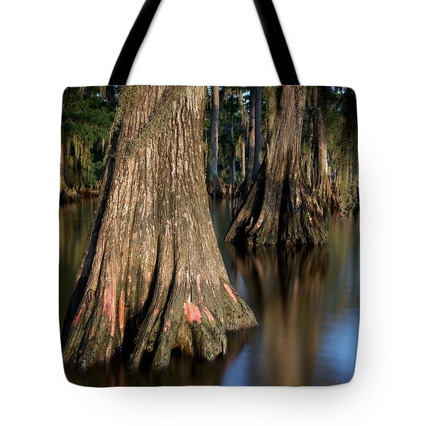 Tote Bag featuring the photograph Cypress Trees by Evgeny Vasenev
