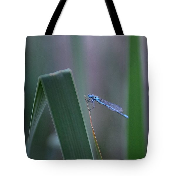 Tote Bag featuring the photograph Dragonfly by Nikki McInnes