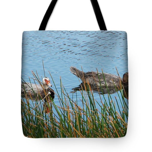 Tote Bag featuring the photograph 2- Ducks by Joseph Keane