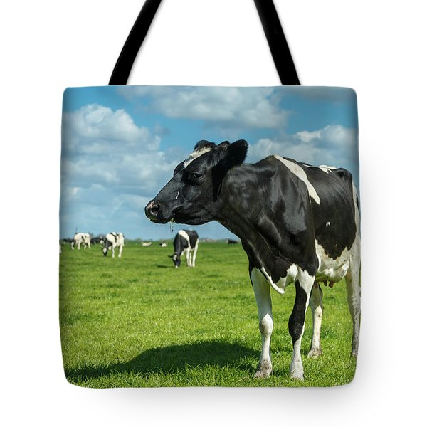 Dutch Cow Tote Bag
