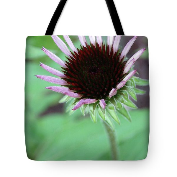 Emerging Coneflower Tote Bag by Rebecca Overton