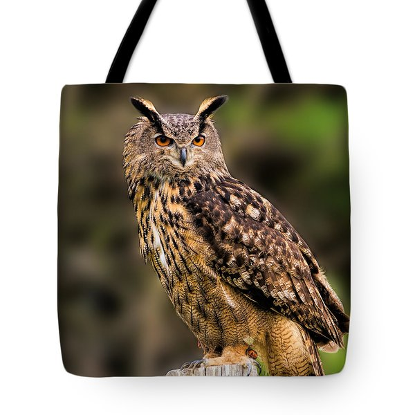 Eurasian Eagle Owl Perched On A Post Tote Bag