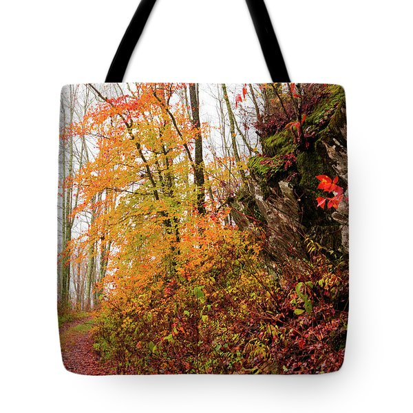 Fall Landscape Tote Bag