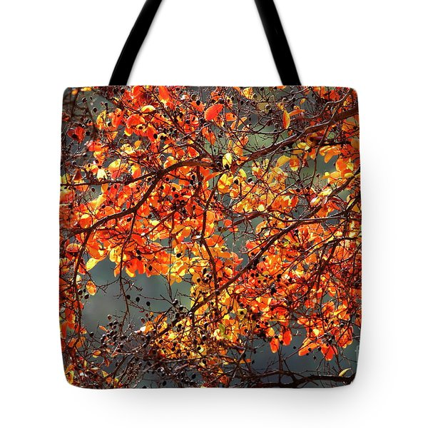 Fall Leaves Tote Bag by Nicholas Burningham