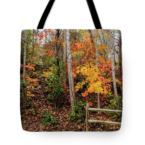 Tote Bag featuring the photograph Fall Time by Randy Sylvia