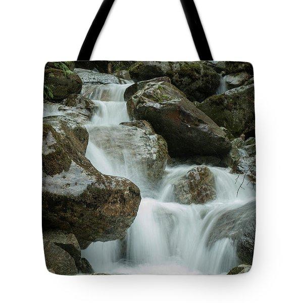 Falls Tote Bag by Rod Wiens