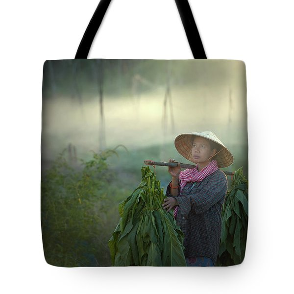 Farmers Were Growing Tobacco In A Converted Tobacco Growing In T Tote Bag