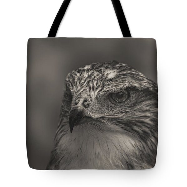 Ferruginous Hawk  Tote Bag