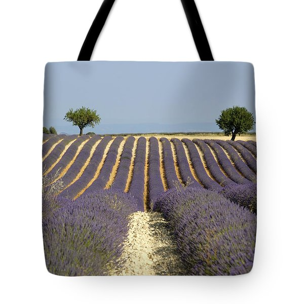 Field Of Lavender. Provence Tote Bag