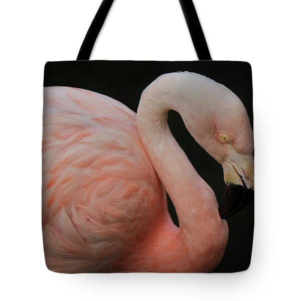 Flamingo Tote Bag by Paulette Thomas