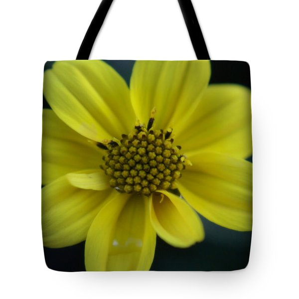 Tote Bag featuring the photograph Flower by Heidi Poulin