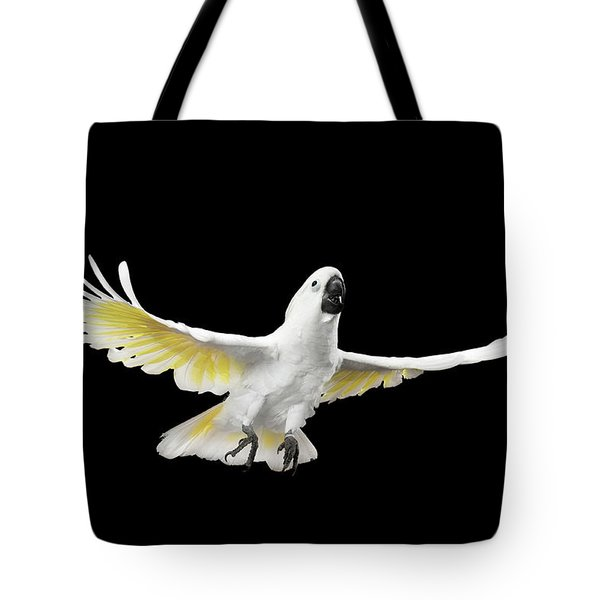 Flying Crested Cockatoo Alba, Umbrella, Indonesia, Isolated On Black Background Tote Bag