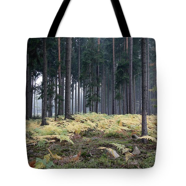 Fog In The Forest With Ferns Tote Bag by Michal Boubin