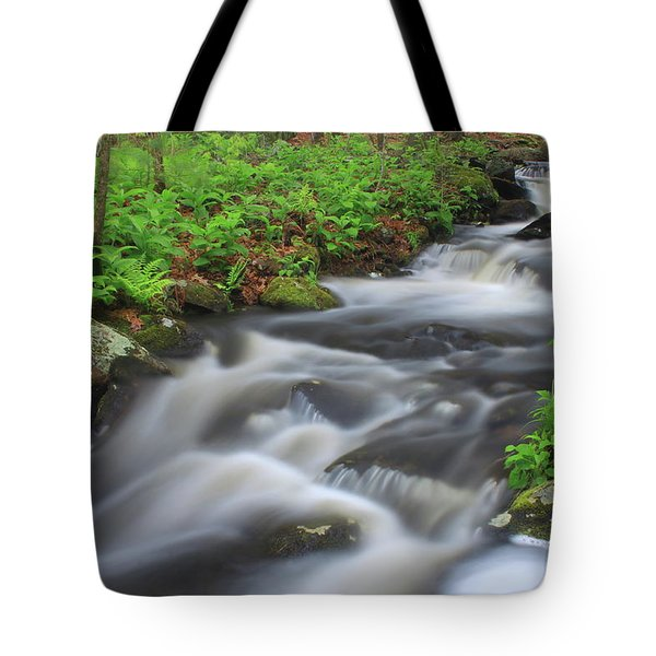 Forest Stream In Spring Tote Bag by John Burk